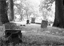 HauntedIllinois.com - Troy Taylor's Review of Greenwood Cemetery in South Decatur, Illinois.